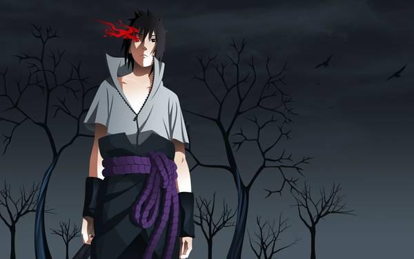 naruto vs sasuke the aftermath
