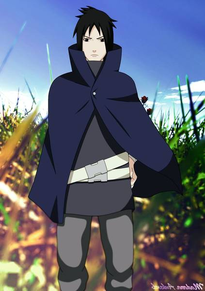sasuke uchiha curse mark level 1